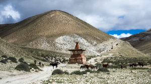 mustang trek in nepal,trekking in nepal , adventure in nepal